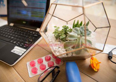 Biz Life - Nicole's Messy Desk SAMPLE-6