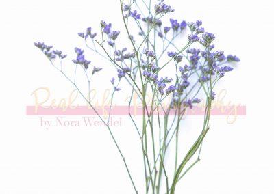Creative Life - Minimal Flowers SAMPLE-2