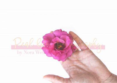 Creative Life - Minimal Flowers SAMPLE-3