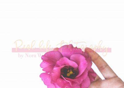 Creative Life - Minimal Flowers SAMPLE-4
