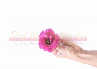 Creative Life - Minimal Flowers SAMPLE-5