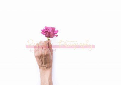 Creative Life - Minimal Flowers SAMPLE-7