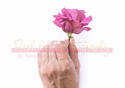 Creative Life - Minimal Flowers SAMPLE-8