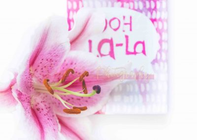 Creative Life - Pink Lily SAMPLE-5