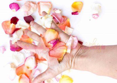 Creative Life - Roses SAMPLE-3