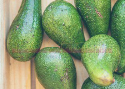 Market Stall Fruit SAMPLES-5