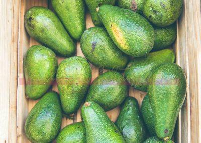 Market Stall Fruit SAMPLES-9